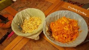 Pumpkin Seeds and Guts