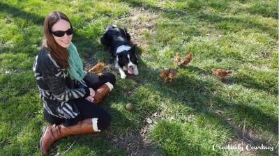 Chicks Update 3