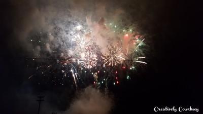 Firework Show 1